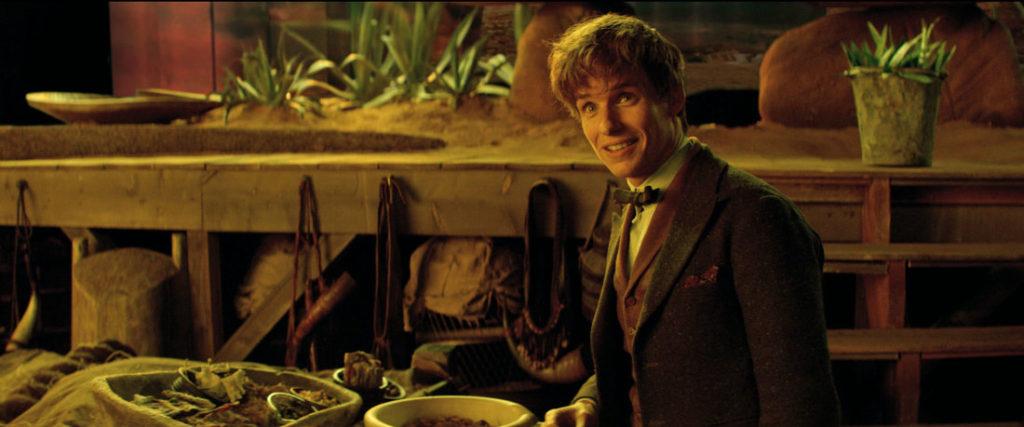 Njutas Miglapūtys (Eddie Redmayne) viduje magiškų gyvūnų lagamino.